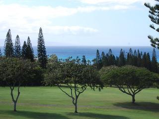 Kapalua Golf Villas  G18V4 - Kapalua vacation rentals