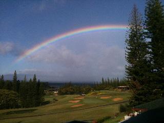 Kapalua Golf Villas  G11T4 - Kapalua vacation rentals