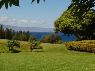 Kapalua Ridge Villas  R2512 - Kapalua vacation rentals