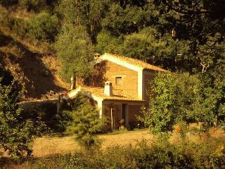 Casa da Adega, peace and quiet within Nature - Santa Clara a Velha vacation rentals