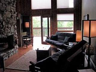 Shoji Lodge - Asheville vacation rentals