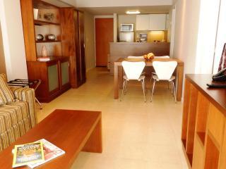New modern 1 Bedroom apt in the heart of Bariloche - San Carlos de Bariloche vacation rentals