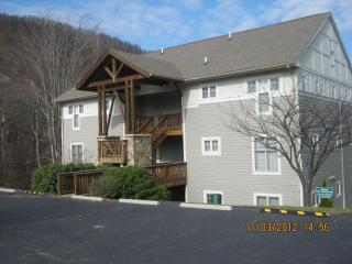 Hawks Peak Condo in Beautiful Seven Devils - Blue Ridge Mountains vacation rentals