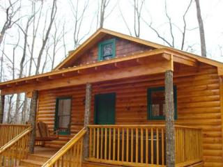 Camp Seven Pines - Gillsville vacation rentals