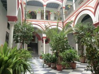 CR101SEV - Apartamento Casa Palacio vistas Giralda  WIFI - Penaflor vacation rentals