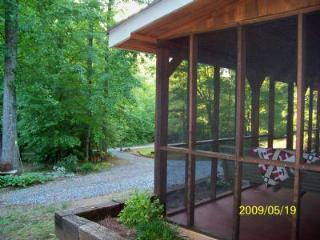 Forest Farm Cabin - Lake George vacation rentals