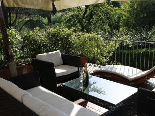 La Terrazza Rental with Large Terrace in Lucca - Lucca vacation rentals