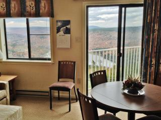 Mtn Lodge 362  Ski In/Out, Village Central - Snowshoe vacation rentals