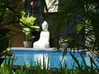 Tree Frogvilla 1 Center Semiyak 5 min to beach - Seminyak vacation rentals