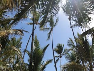 Estrella del Mar 2BR minutes from Bavaro beach - Punta Cana vacation rentals