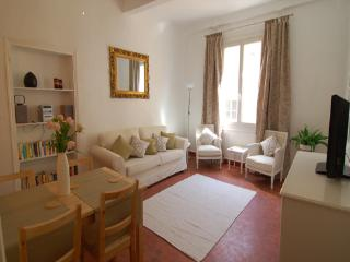 Anais- Absolutely Stunning 2 Bedroom Apartment in Vieux Nice - Vence vacation rentals