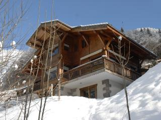 Charming Chalet Apartment French Alps Ski Resort - Rhone-Alpes vacation rentals