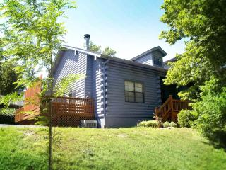 Woods Edge Cabin IN Branson- NO CLEANING FEES! - Kimberling City vacation rentals