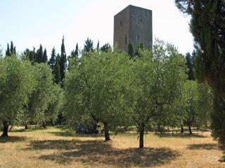 Torre del Merlo - Riparbella vacation rentals