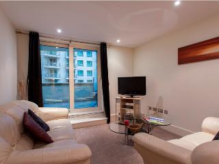 Modern & Luxurious 1 Bed Apartments at Vauxhall - London vacation rentals