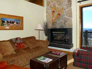 Storm Meadows Club A Condominiums - CA417 - Steamboat Springs vacation rentals