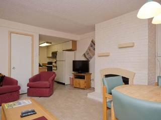Ski Trail Condominiums - SK105 - Steamboat Springs vacation rentals