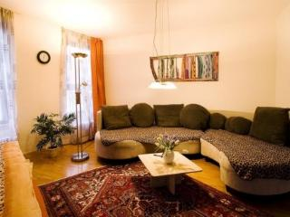 Vacation Apartment in Freiburg im Breisgau - 560 sqft, central, friendly, comfortable (# 3348) - Freiburg im Breisgau vacation rentals