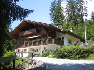 Chalet Ave, 2 flats (sleeps 9 and 4 persons) - Jungfrau Region vacation rentals