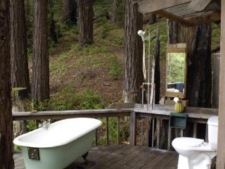 $ 145 Big Sur Getaway - Big Sur vacation rentals