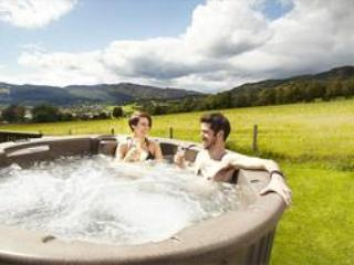 Couples Spa Lodge with Hot Tub - Blair Atholl vacation rentals