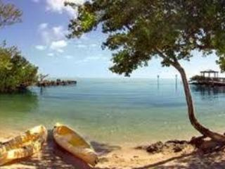 Key Largo 2/2 Tropical Daze Oceanfront Condo - Key Largo vacation rentals