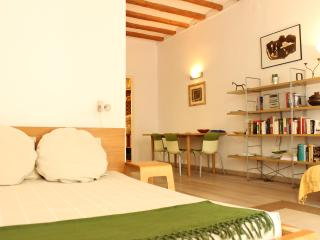 Cosy studio flat in Old Town, Barcelona - Barcelona vacation rentals