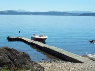 Lake district - Panguipulli Lake - Panguipulli vacation rentals
