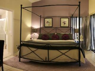 Luxury!!! 5* Orlando Pool villa 3bed 2 bath - Orlando vacation rentals