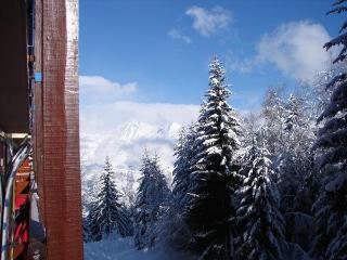 4 person studio apartment in French Alps Arc 1800 - Savoie vacation rentals