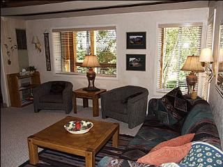 Close to new Base Village - Walk to Restaurants and Shops (1311) - Carbondale vacation rentals