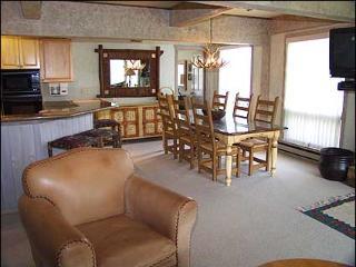 Snowmass Condo -  (2121) - Carbondale vacation rentals