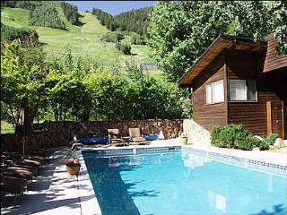 Ski-in/Ski-out - Convenience! Location! (8114) - Aspen vacation rentals