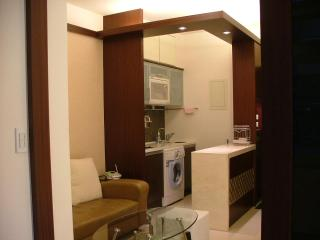 City Center Loft Apartment 1min MRT for 3~5 pax - Taiwan vacation rentals