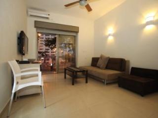 Segal in Jerusalem Center (2 rooms apartment) - Jerusalem vacation rentals