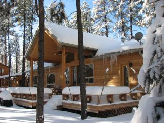 LUXURY KNOTTY PINE CABIN IN PINETOP LAKES C.C. - Pinetop vacation rentals