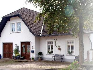 Vacation Apartment in Schalkenmehren - 753 sqft, unique, idyllic, modern (# 3394) - Schalkenmehren vacation rentals
