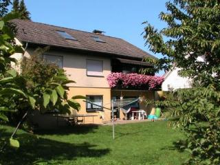 Vacation Apartment in Kleinheubach - 570 sqft, beautiful, relaxing, quiet (# 3404) - Kleinheubach vacation rentals