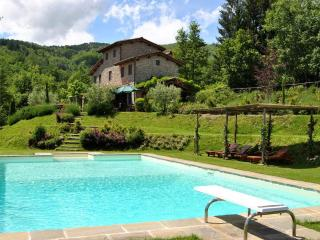 Lovely house near Lucca&Florence w/ beautiful view - Pescia vacation rentals