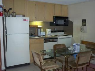 1 Bedroom Condo Ski in/out .At Snowshoe Mtn. Lodge - West Virginia vacation rentals