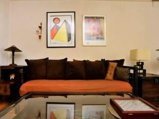 Large1Bedoorm Apt. - Terrace and Central Park View - New York City vacation rentals