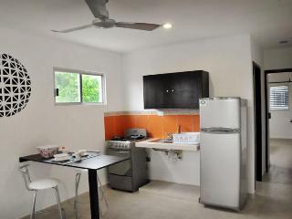 Apartments in Paseo de Montejo - Merida vacation rentals