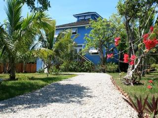 Square Grouper - Harbour Island vacation rentals