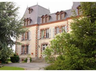Chateau De Montmirey - Le Mesnil-Amey vacation rentals