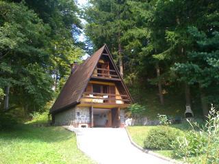 slovenian fairytale chalet - Slovenia vacation rentals