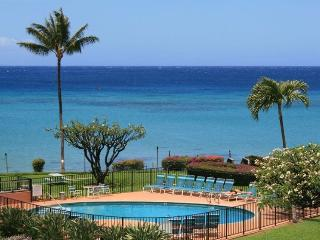 Fabulous view, 2 king beds, wi-fi, free parking. - Lahaina vacation rentals