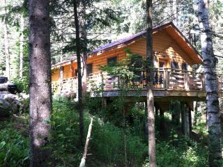 Forest Cabin - Lake Itasca vacation rentals