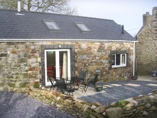 TREFAES NEWYDD, pet-friendly character cottage, pasture, woodburner, ideal for coast, Sarn Ref 14905 - Sarn Meyllteyrn vacation rentals