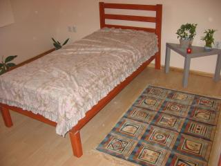 Apartment Carpe Diem - Serbia vacation rentals