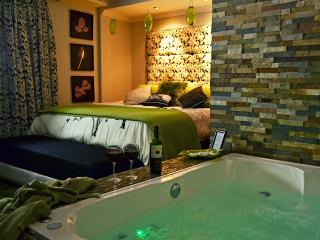 Centro. Sound-Proofed. Kings. Jacuzzi. Dishwasher. - Cuenca vacation rentals